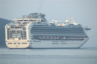 news cruise ship